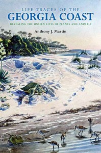 Life Traces of the Georgia Coast by Anthony J. Martin