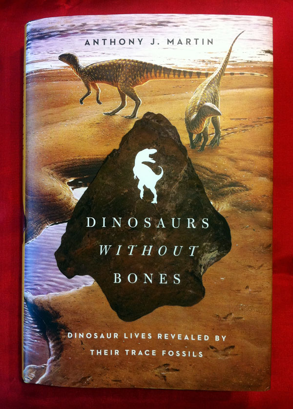 Dinosaurs-Without-Bones-Book