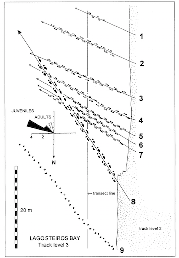 Lockley-et-al-Sauropod-Track-Map-Cabo-Espichel